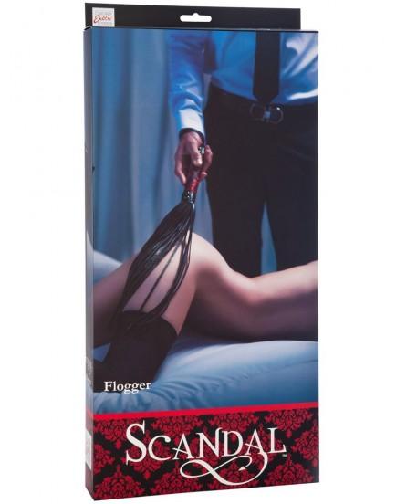 Důtky (Scandal)
